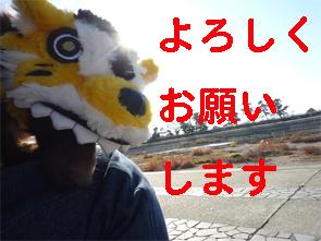 2010123102