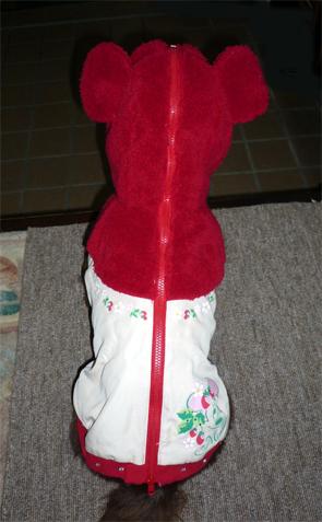 2011010803