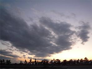 2011030311