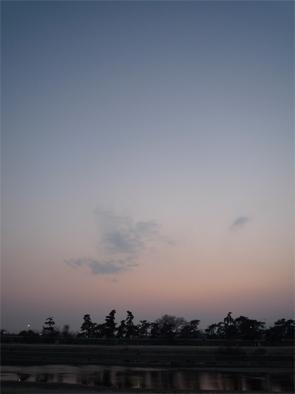 2011033101